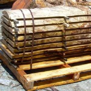 Sassafras hydrowood